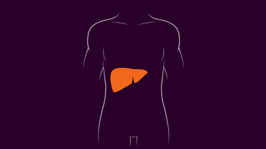 hepatitis liver in red